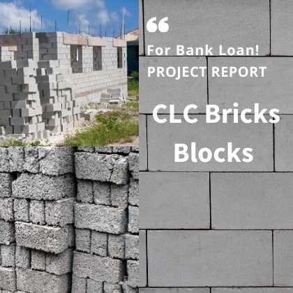 CLC Bricks Blocks Project Report
