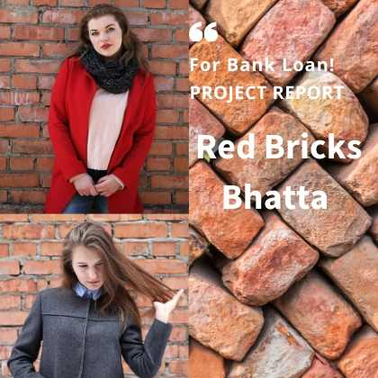 red bricks bhatta project report