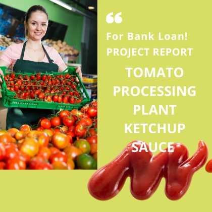 Tomato Processing Plant Project Report Ketchup Sauce